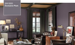 Sherwin Williams Photo stock - Exclusive Plum