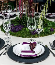 tablescape-focus-single-setting