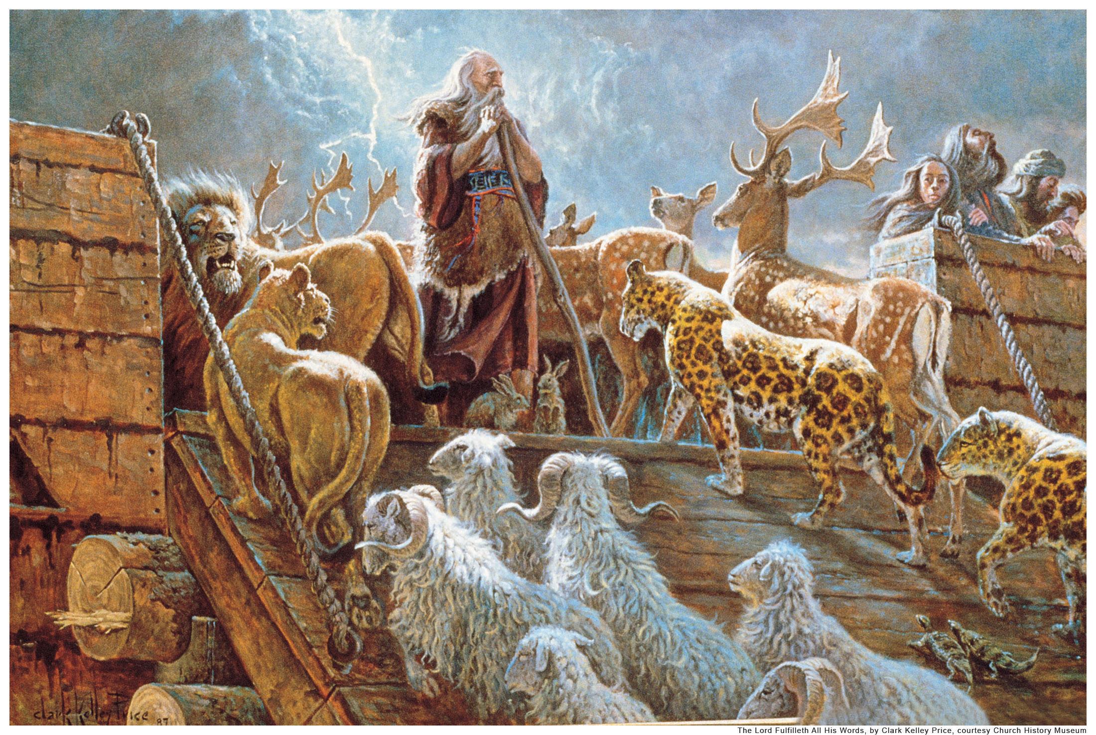 long story short god chooses noah his treasure seekers