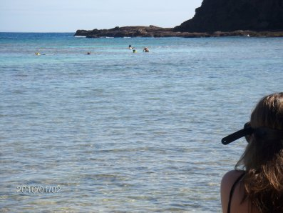 snorkeling397