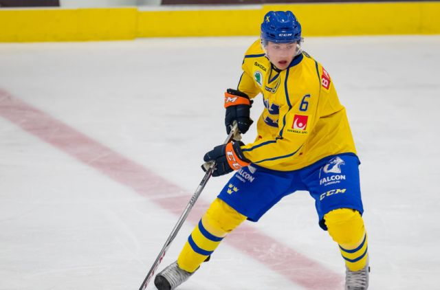 Flyers loan Linus Hogberg to Swedish Allsvenskan League