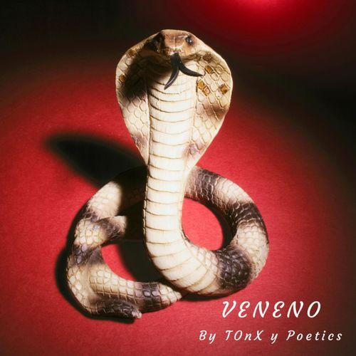TOnX and Poetics - Veneno