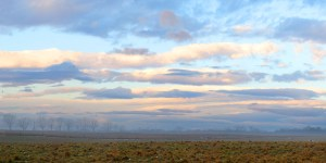 Fred Eberhart, Morning, The Plains, Virginia, digital photograph