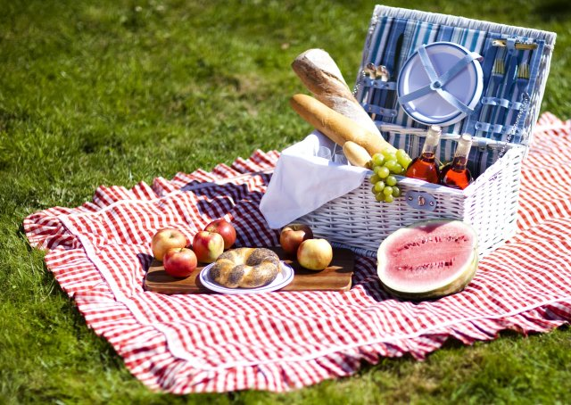 It's always fun to have a picnic with your friends in the park ...