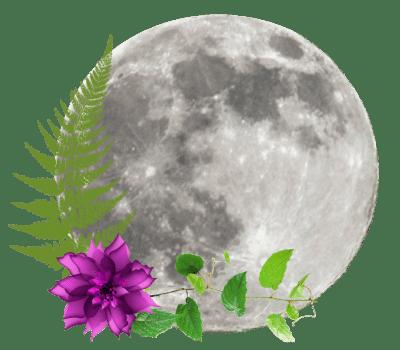 May 2020 Full Moon