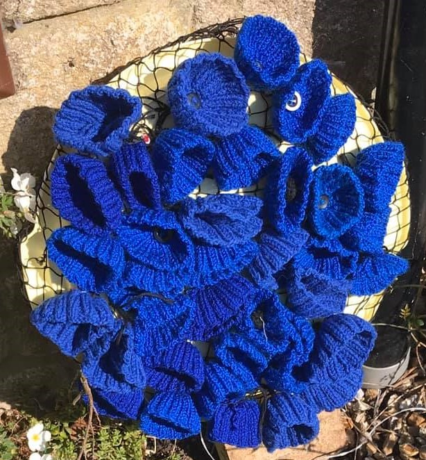 blue knitted poppies