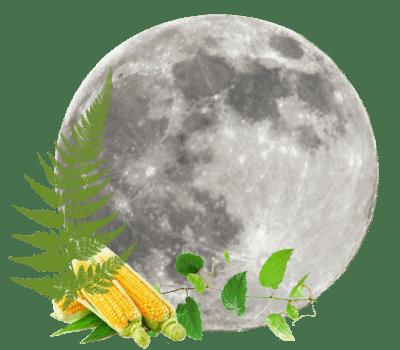 Full Moon on Wednesday, September 2nd