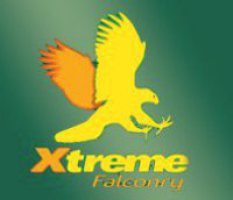 Xtreme Falconry at Dorset Falconry Park