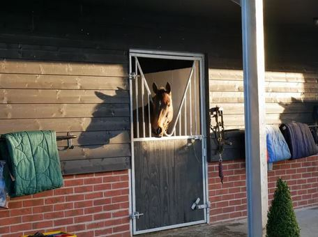 Live-in Home Groom/Yard Manager Required For Competition Yard