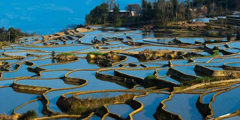 Yuanyang Terraced Fields