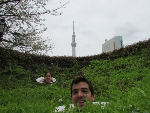 And with the Tokyo Sky Tower in the background!