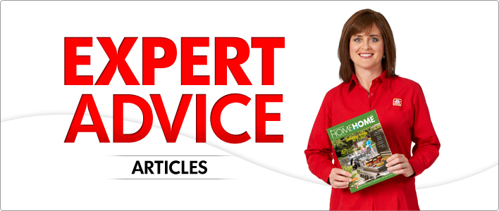 Expert Advice Articles Banner
