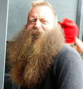 Jeff Langum beards