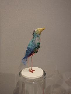 Oiseau 1 Sophie Touret