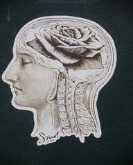 Cerveau de Rose, Cerveau Parisien par Smot photo de Jeanne Menjoulet et cie