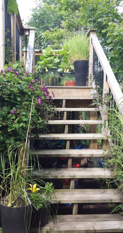 Niagara Deck - After Construction Stairs