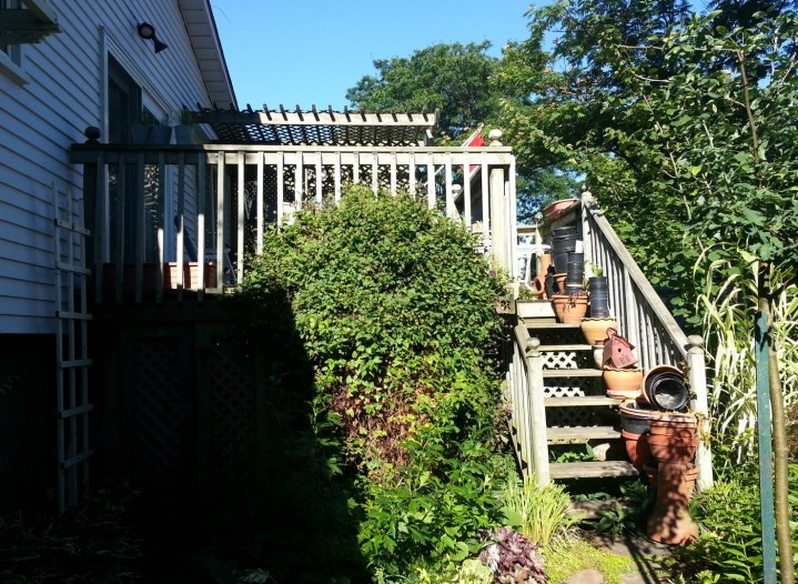 Niagara Deck - Before Construction Left Side View 2