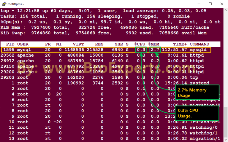 Check Memory Usage on Linux
