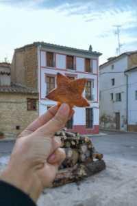 aras del los olmos starlight reserve stargazing valencia star cookie