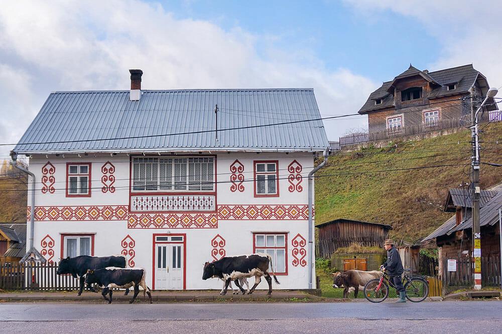 Painted house in Ciocanesti Village, Romania
