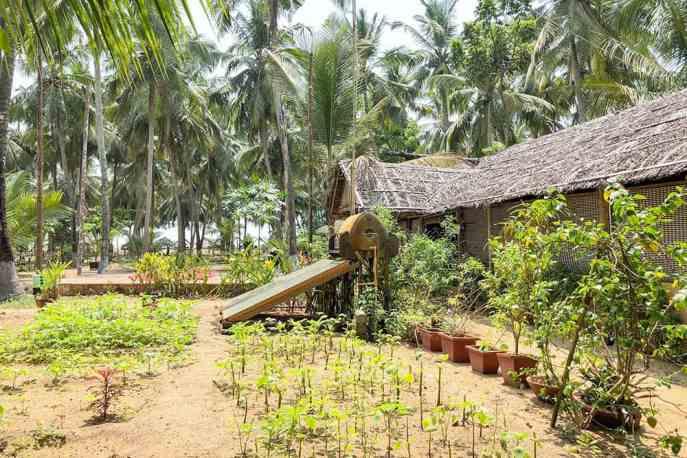 Kadappuram Ayurvedic Beach Resort, Kerala
