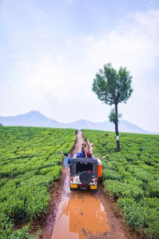 Exploring Lockhart Tea Plantations by Jeep in Munnar, Kerala - #munnar #kerala #india
