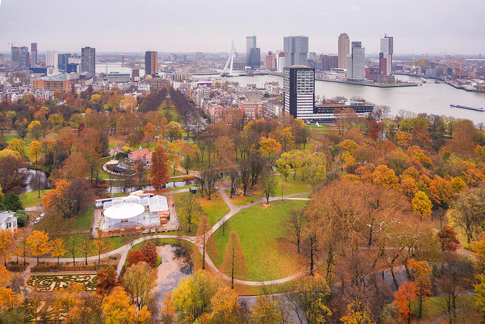 View of park with autumn colours with buildings and port in the background