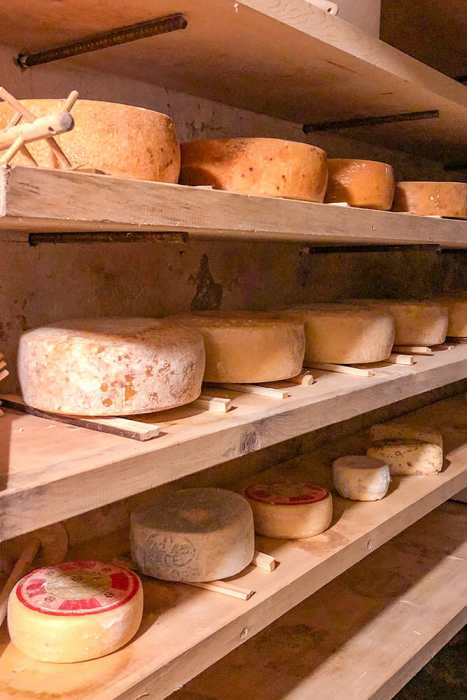 Shelves with cheese wheels on them