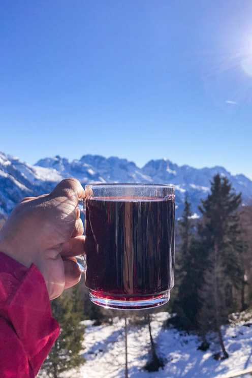 Hand holding a glass with a red wine type drink on top against a view of the mountains