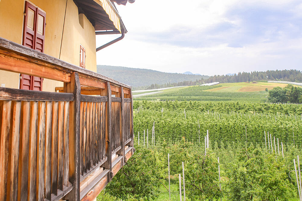 View over the hills and an apple orchard from a wooden balcony