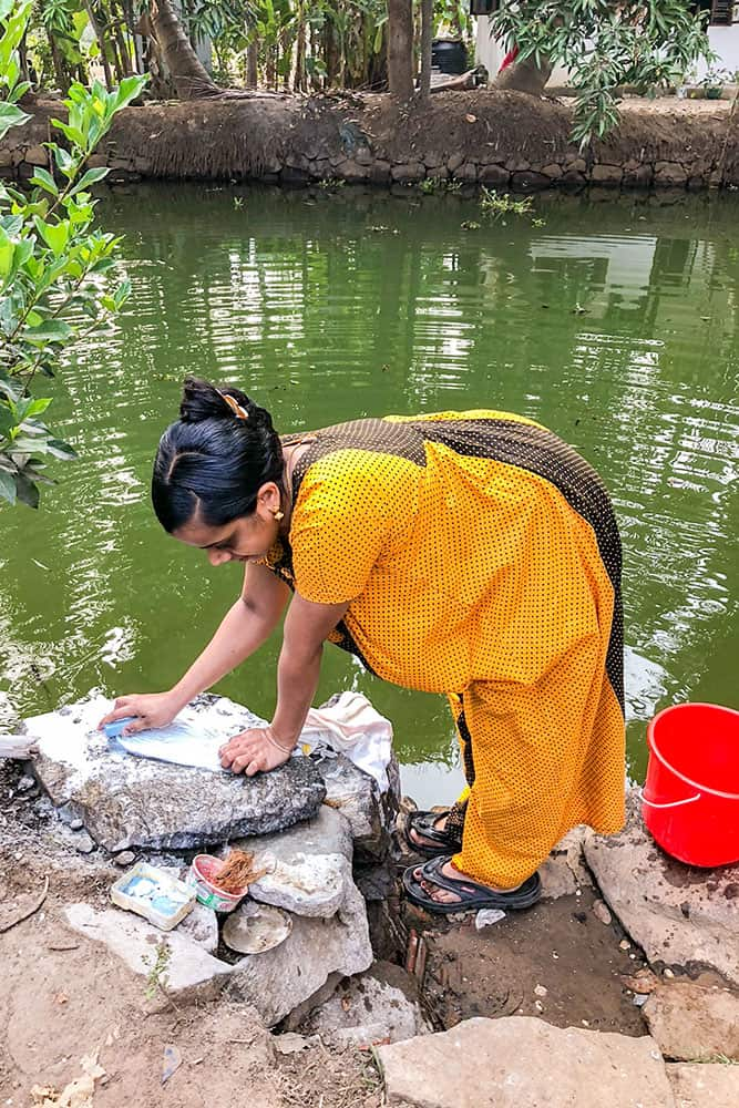 Lady washing laundry in the river in the Kerala Backwaters