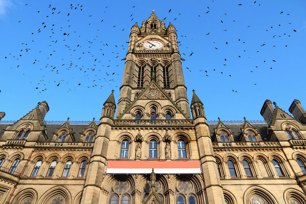 Looking up to Manchester Town Hall tower with lots of birds flying around