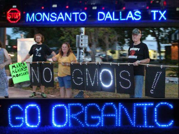 stop-monsanto-day-7