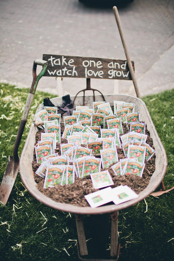 Seed Packets in Wheelbarrow