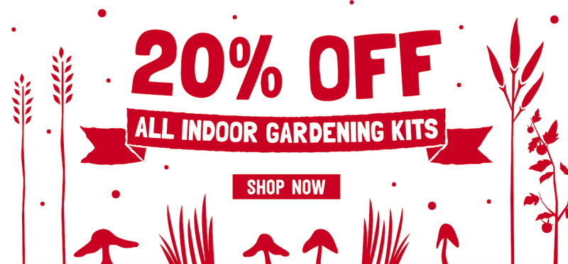Back to the Roots: 20% Off Indoor Herb Garden Kits