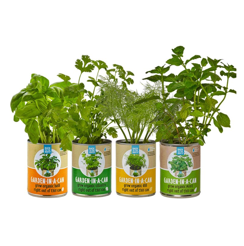 Back to the Roots: 20% Off Indoor Herb Garden Kits • Broke and Beautiful