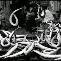 Naples, Italy, 1958