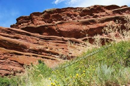 Red Rocks (3)
