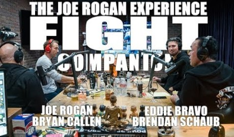Joe Rogan Experience - Fight Companion - February 17, 2019