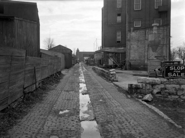 "View of the Mellwood Distillery from an alley between Mellwood & William. Note the sign stating, ""Slop for Sale."" (Courtesy UL Photographic Archives / Reference)"
