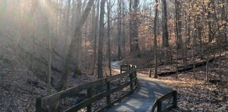 A trail in Jefferson Memorial Forest. (Courtesy Metro Parks)