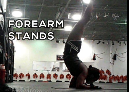 Forearm Stand Practice