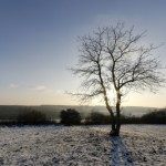 Winter Hazzards