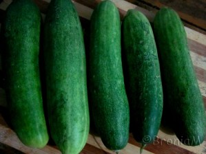They are green and real favourite. Cool cucumbers.