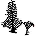 Två heliga träd i nordisk mytologi