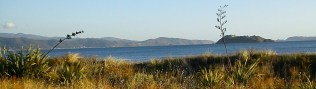 cropped-2012-03-17-petone-foreshore-43.jpg