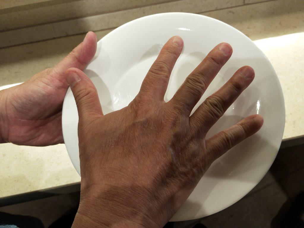 歌诗达威尼斯号 - 比巴掌大一点的餐盘