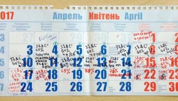 Календарь закладки яиц на 2017 год