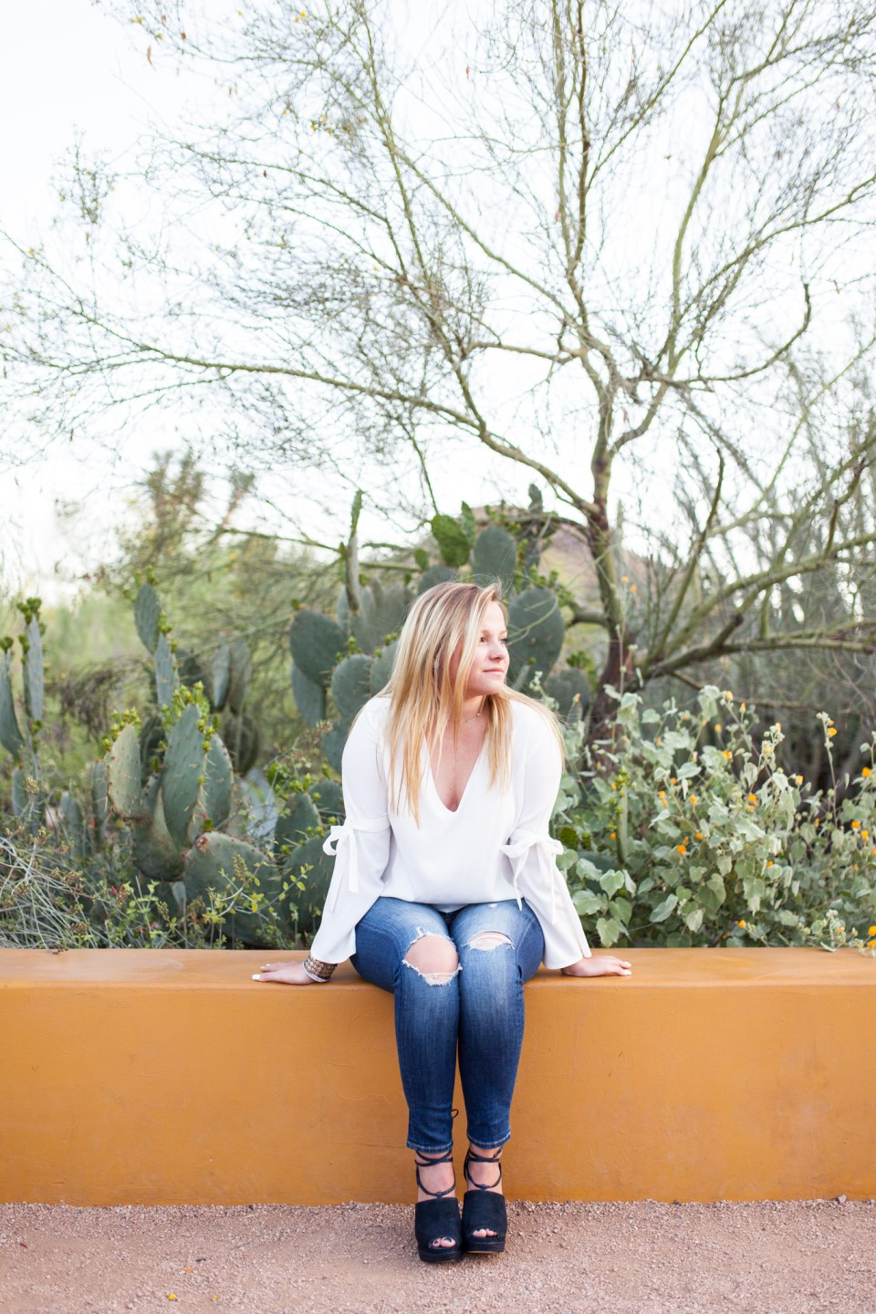 desert senior portraits with yellow bench and cactus