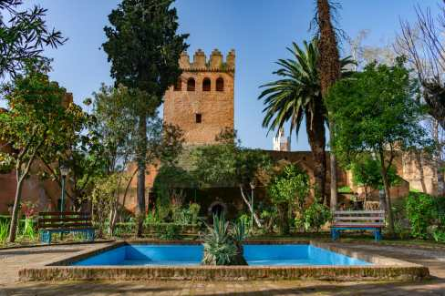 Gardens in the Kasbah